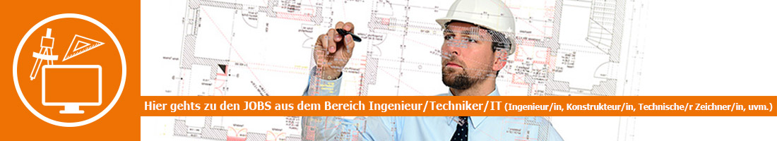 Ingenieur/Techniker/IT